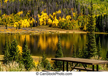 Fall in Steamboat Springs Colorado - Close up of picnic...
