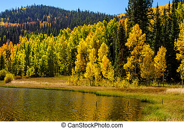 Fall in Steamboat Springs Colorado - Shoreline of mountain...