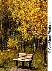 Fall in Steamboat Springs Colorado - Wooden bench sitting...