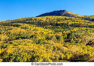 Fall in Steamboat Springs Colorado - Mountain slope filled...
