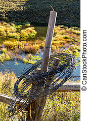 Fall in Steamboat Springs Colorado - Rolled up barb wire...