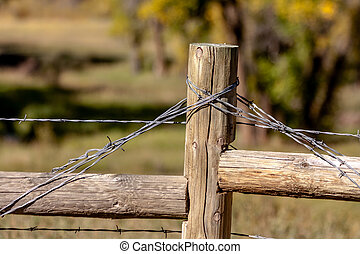 Fall in Steamboat Springs Colorado - Close up of barbed wire...