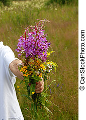 Summer flowers bouquet - various summer field flowers...