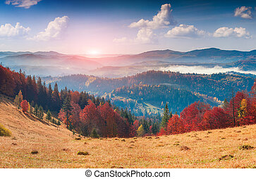 Colorful autumn panorama in the mountain village. Foggy morning