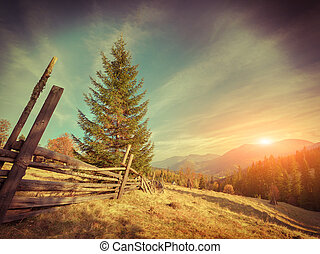 Sunny autumn landscape in the mountains. Retro style.