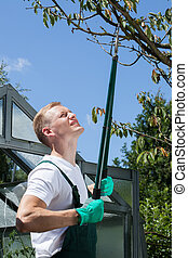 Gardener cropping branch - Young gardener cropping branch in...
