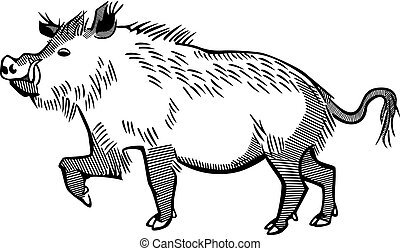 Wild Boar - vector line art of a wild boar