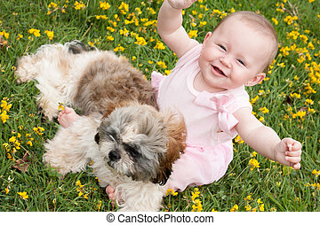 Happy baby and a puppy - Sweet baby girl and puppy in a...