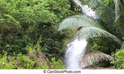 Waterfall in the tropical jungle falls off a cliff into the...