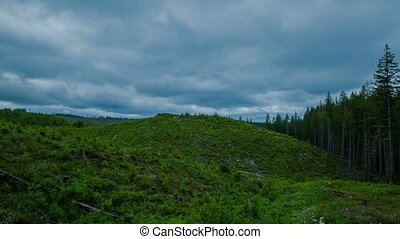 Oregon Deforestation 581 - Time lapse of deforestation in...