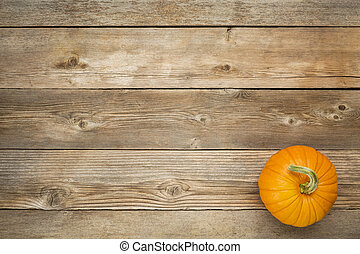 autumn pumpkin on rustic wooden board with a copy space