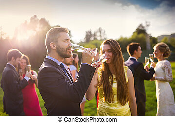 Wedding guests drinking champagne while the newlyweds...