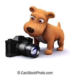 3d Dog finds a camera - 3d render of a dog looking at a...