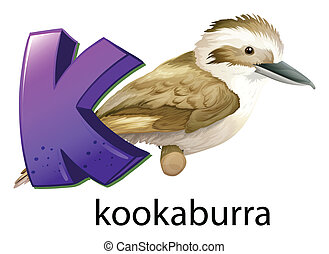 A letter K for kookaburra - Illustration of a letter K for...