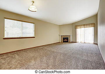 Spacious empty living room with fireplace - Spacious empty...