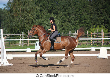Brunette woman cantering on chestnut horse in summer