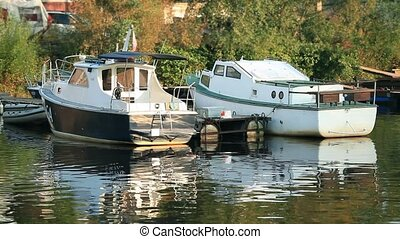 Boats summer marina - marina on a sunny day Loop ready File