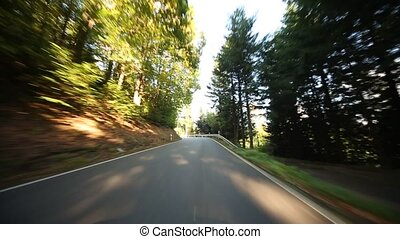 Onboard-Camera in Germany in the black forest