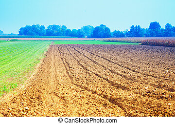 Plowed fields - Landscape with plowed fields under blue sky