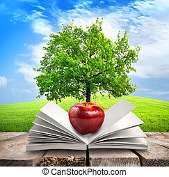 Apple and opened book