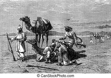 A stop in the desert, vintage engraving - A stop in the...