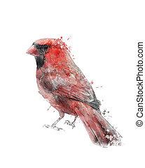 Watercolor Image Of Red Cardinal - Watercolor Digital...