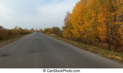 Video of highway and trees in autumn