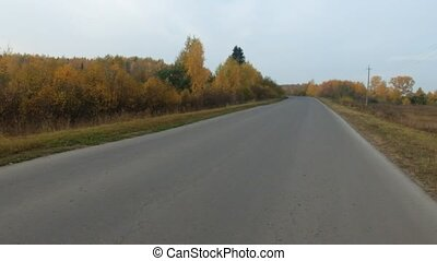Video of road  and trees in cloudy day