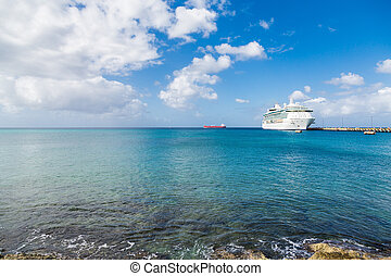 White Cruise Ship Docked Beyond Surf - White Luxury Cruise...