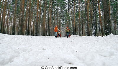 Playing Together - Youngsters pulling sledges with their...