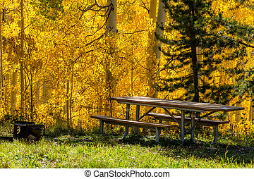 Fall in Steamboat Springs Colorado - Picnic table and grill...