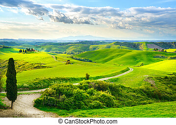 Tuscany, rural sunset landscape. Countryside farm, white road an
