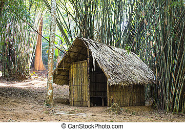cottage In the bamboo forest