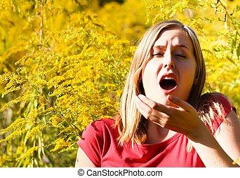 alérgico, Para, ragweed