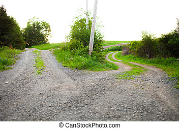 Path splits in two and a choice must be made - Conceptual...