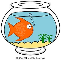 a fish in its aquarium