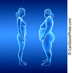 Fat and thin Woman - 3d illustration of fat and thin woman....