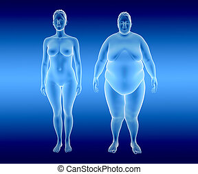 Fat and thin Woman - 3d illustration of fat and thin woman...