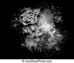 White Bengal Tiger with Art Paint on Black - A white tiger...