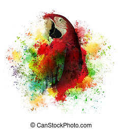 Paint Splatters of Maccaw Parrot on White - A creative art...