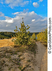 Sand quarry in the early autumn. - Sand quarry in Lytkarino,...