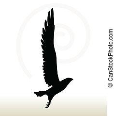 eagle silhouette - illustration of eagle silhouette isolated...