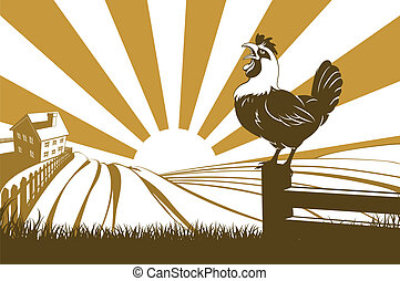 Farm and rooster - A farm with farmhouse in the distance and...