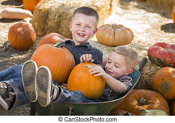 Two Little Boys Playing in Wheelbarrow at the Pumpkin Patch...