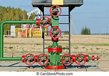 cano, óleo