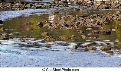 Boulders in a stream with water flo
