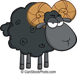 Angry Black Ram Sheep