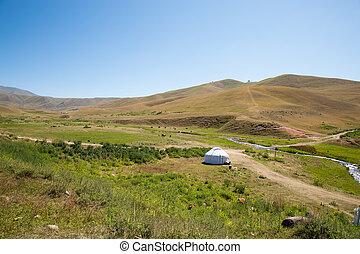 Kazakh, yurt, Assy, planalto, Tien-Shan, montanha, Almaty,...