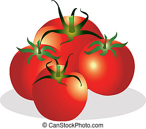 Tomatoes group vector illustration