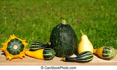 Ornamental pumpkins on wooden table an green background